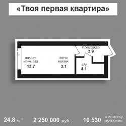 Студия 24,8 м2